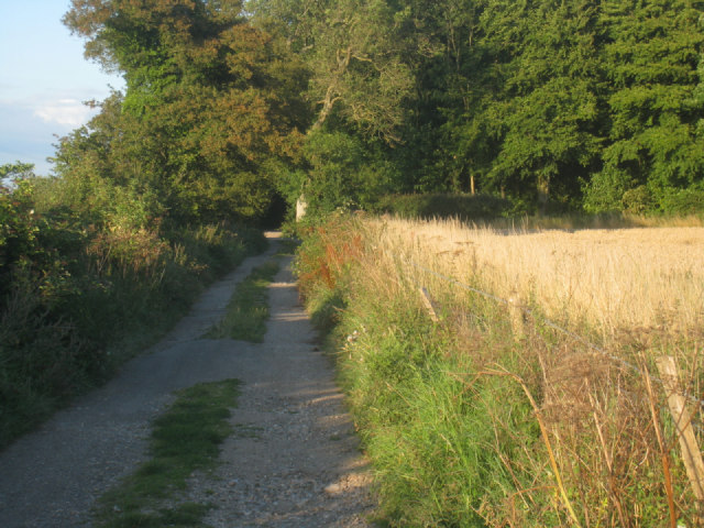 Track / Wayfarer's Walk