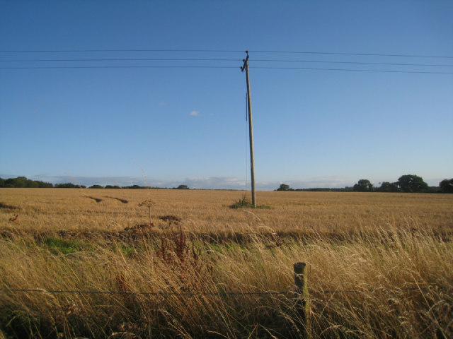 Fields near Itchen Row