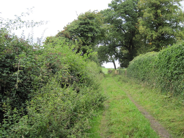 Footpath  to  Normans