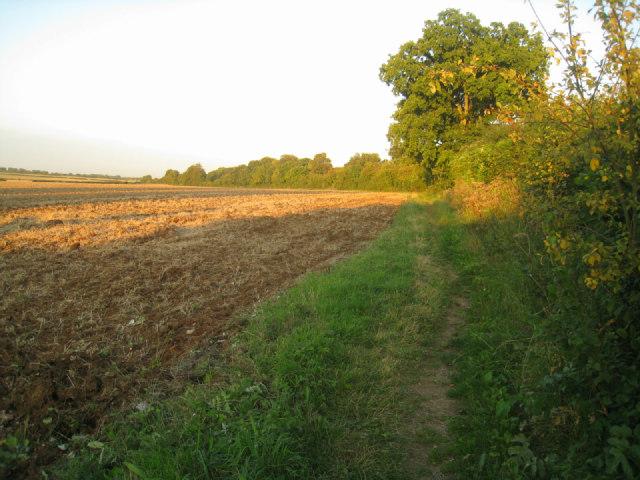 Field east of Oakley