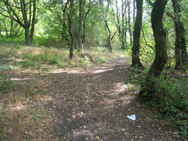 Path in Gulling Wood