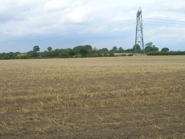 Farmland, Fordoles Farm
