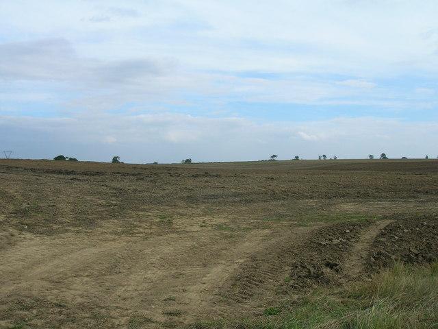 Farmland, Fordales Farm