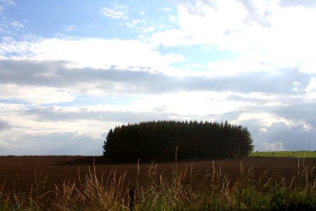 Ardlair Field