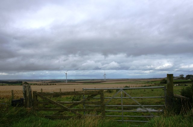 Improvised gates by Monkshill