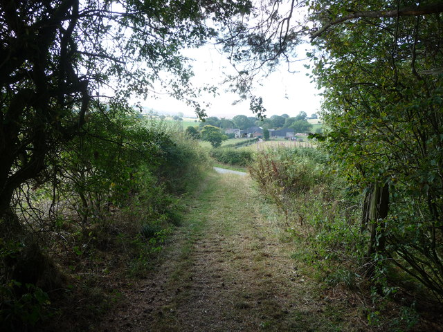 View from the woodland track near Lordshill