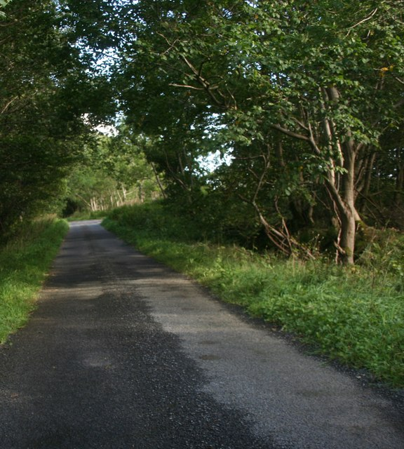 Road by Chapel Park