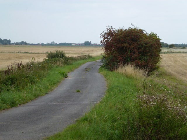 West Drove South, Gedney Hill