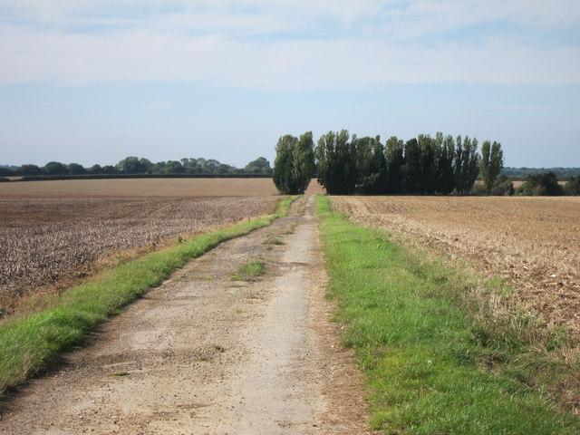 Farm track off Faversham Road