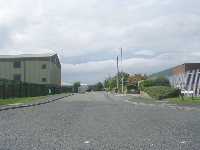 Thistle Way - Stone Pits Lane