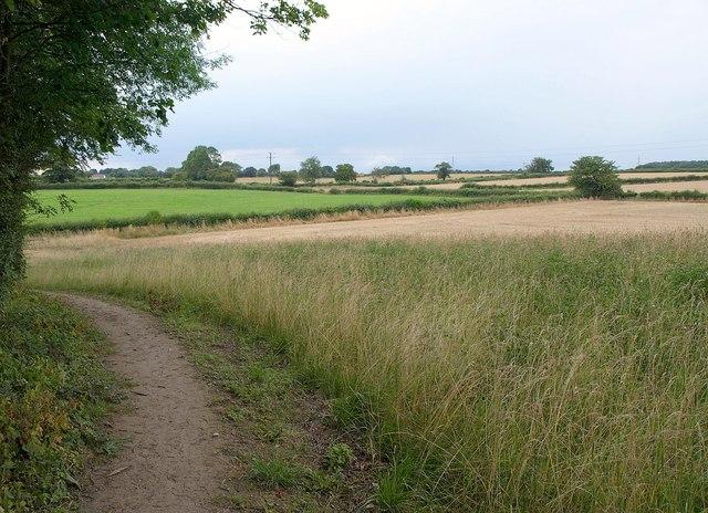Fields near Potterton