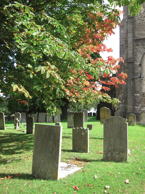 Graves at Church of St Nicholas