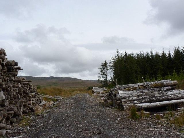 Felled Log Pile in Avenvogie Forest, Islay
