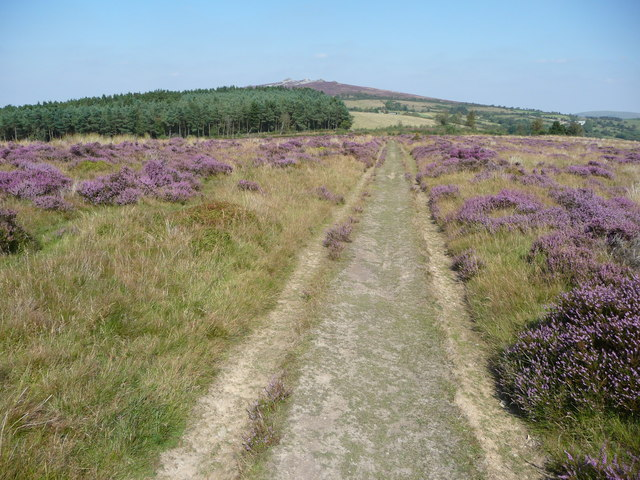 Footpath near Nipstone Rock on the Stiperstones ridge