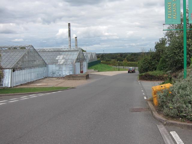 Greenhouses at Ruxley Manor Garden Centre