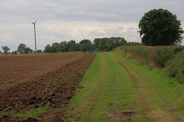 Track Along Edge of Field