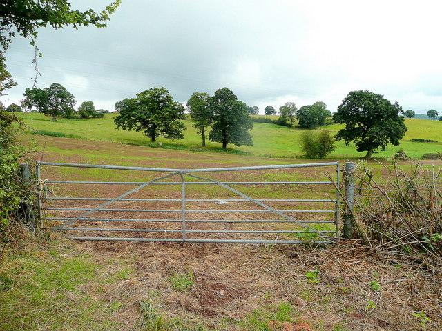 Pastoral landscape north of Driffield farm