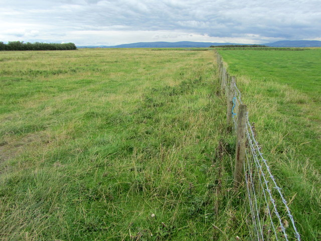 Pastures by Fanny Bridge