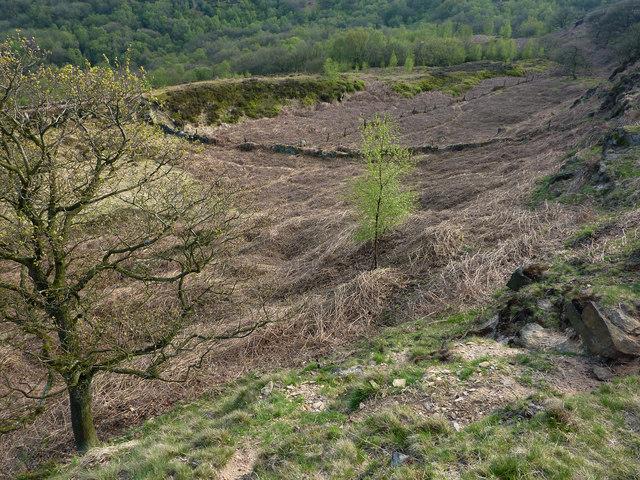 Land above Broad Head Clough