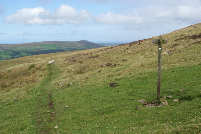 Path on the side of Foel Eryr