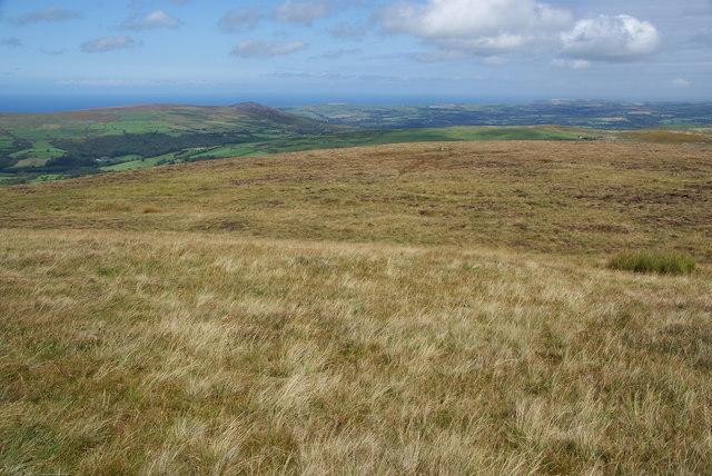 The northern slopes of Foel Eryr