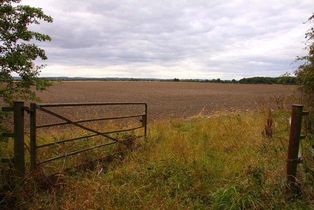 Gateway into a field