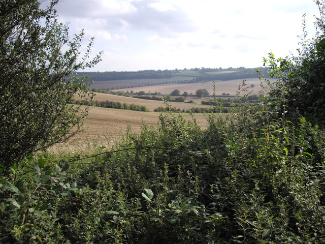 View from Studham Lane, near Dagnall