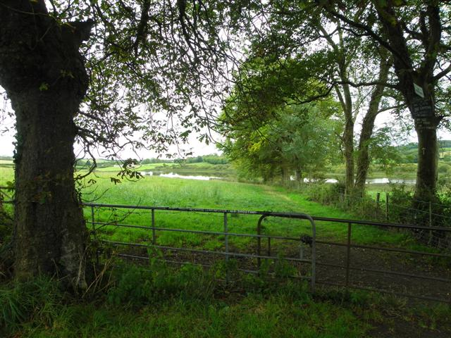 Killaney Townland