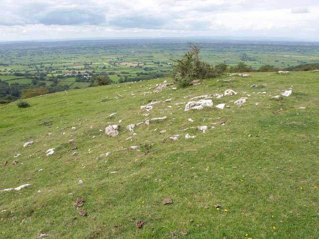 On the Mendips west of Westbury Beacon