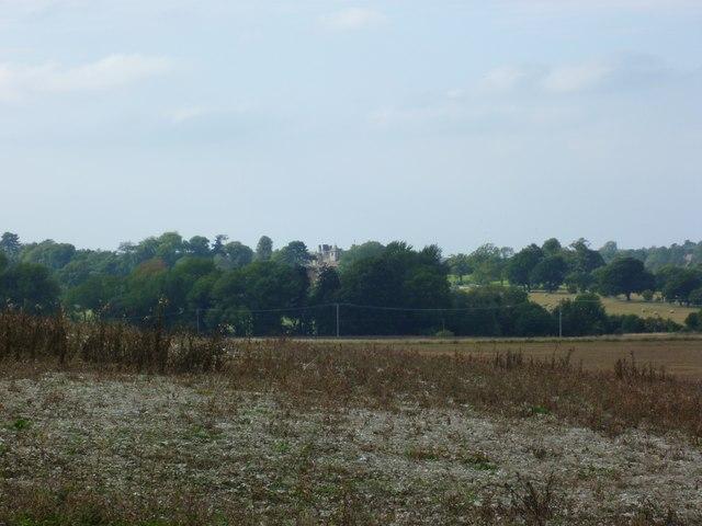 View to Wiston House