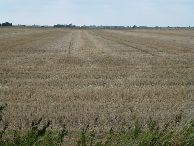 Stubble field south of Gedney Hill