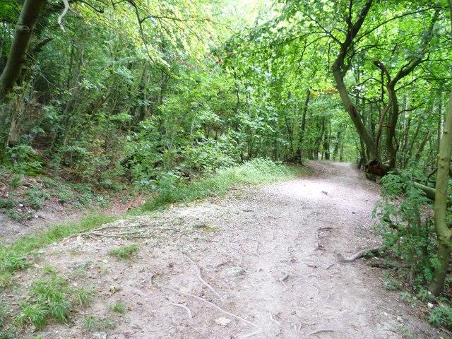 The bridleway called Wiston Bostal