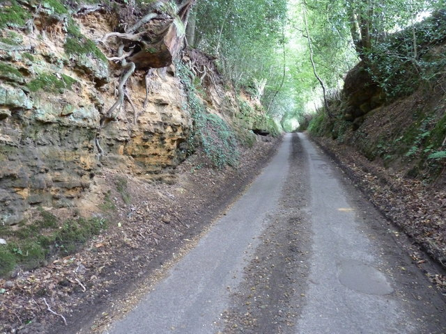 West along Iping Lane