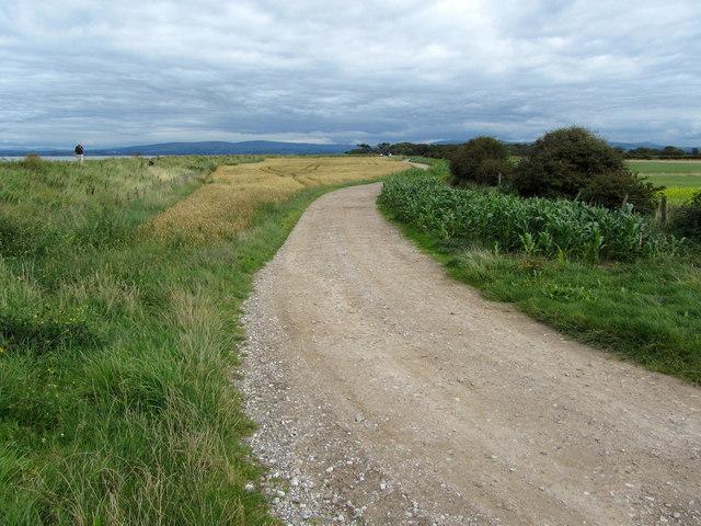 Track from Ridge Farm