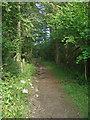 SS8583 : Footpath, Cwm Ffos by eswales