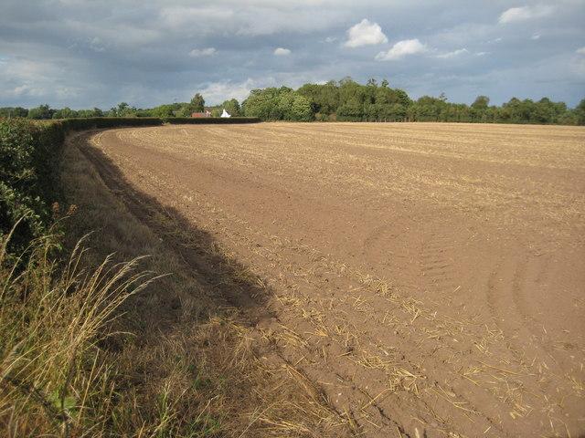 Arable land near Birch Farm