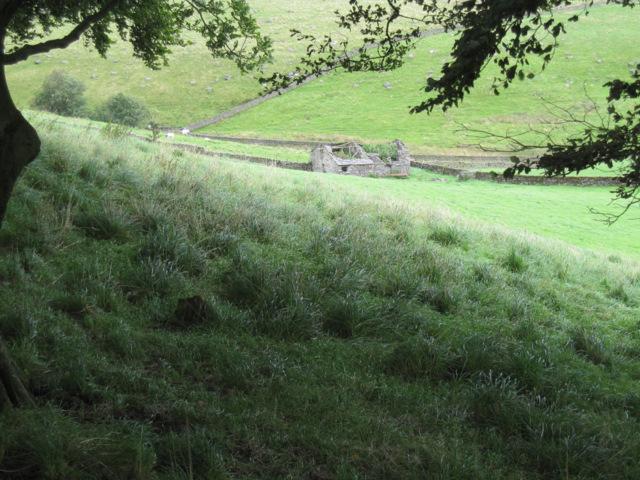 The ruin of Billinger Barn from Frog Lane