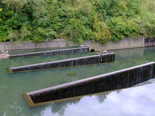 Weir at Osterley Lock