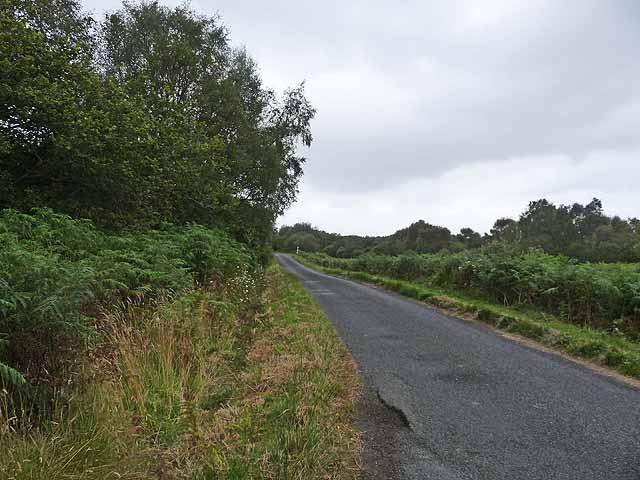 Road at Druimgigha