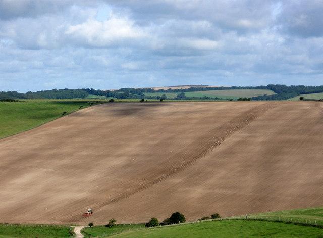 Ploughing Falmer Hill