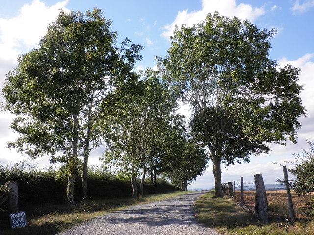 Track to Ramsden Farm