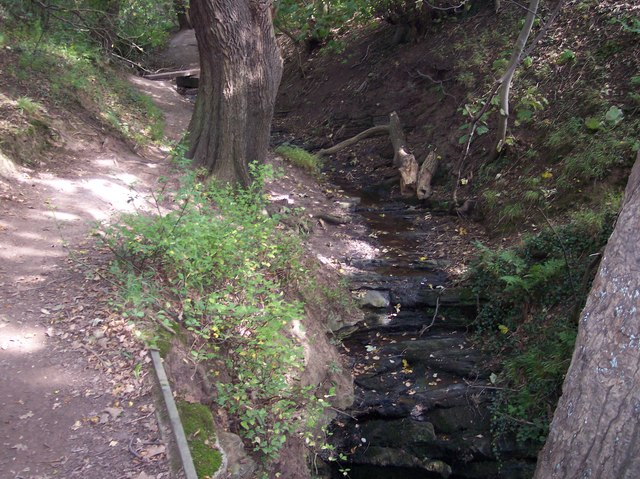 Path and brook in Dungeon Wood