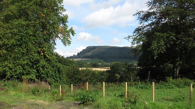 Benarty Hill seen from Kelty