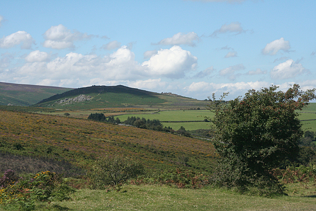 Ilsington: towards Chinkwell Tor