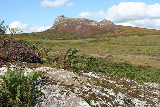 Ilsington: towards Haytor Rocks