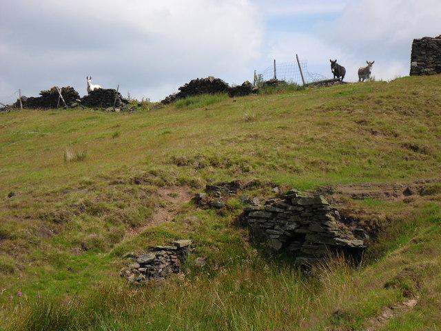 Binn Edge, near Marsden