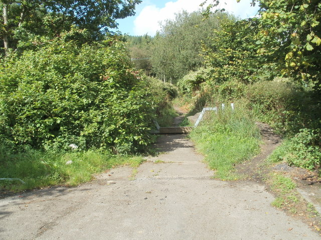 Track into  woodland at the NW edge of Glynneath