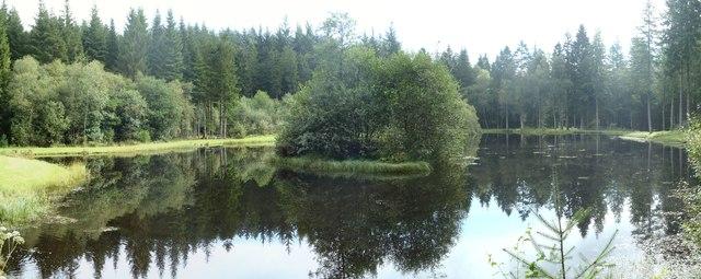Reflections in Coldstream Loch, Drumlanrig Woods