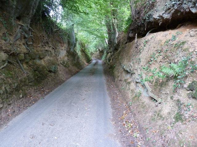 Stanwater Lane near Iping
