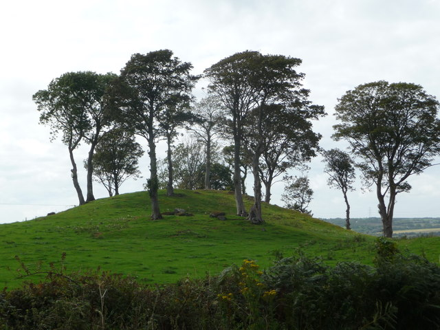 Domed mound with trees beside the A5025